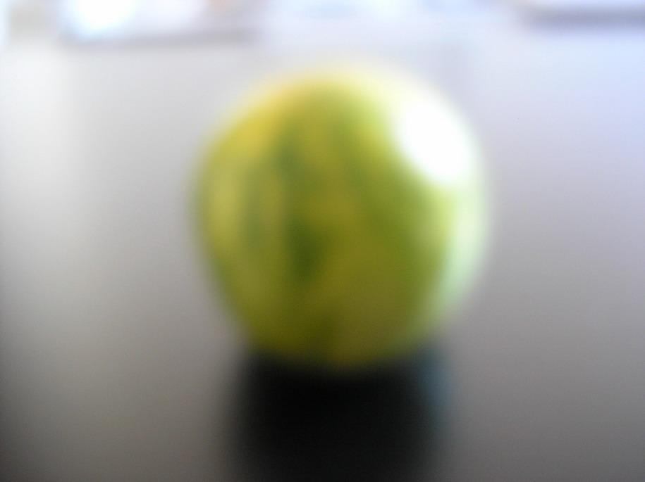 greentomato.jpg